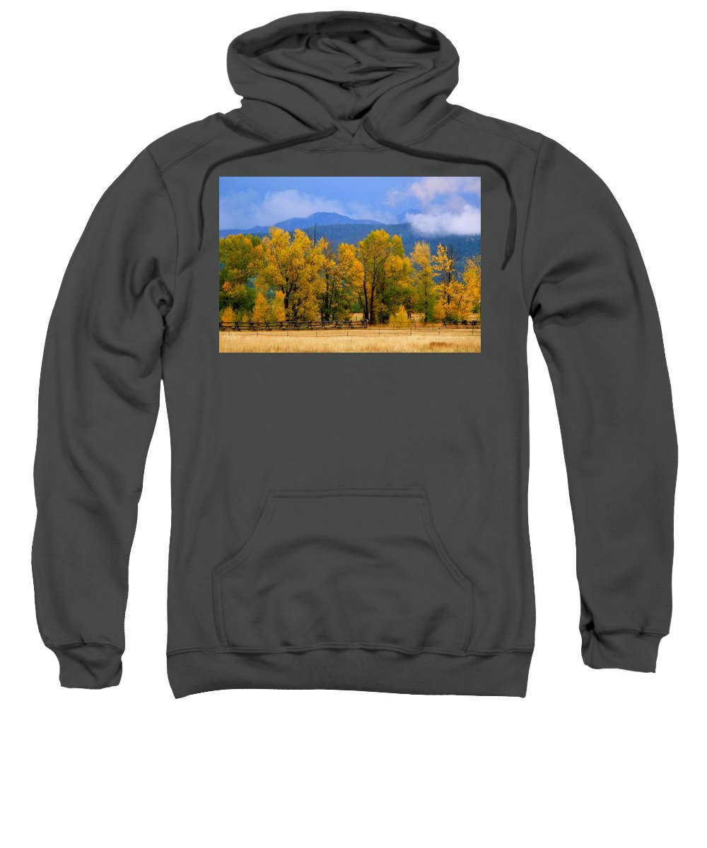 Cottonwood Sweatshirt featuring the photograph Murmur Of The Cottonwoods by Eric Tressler