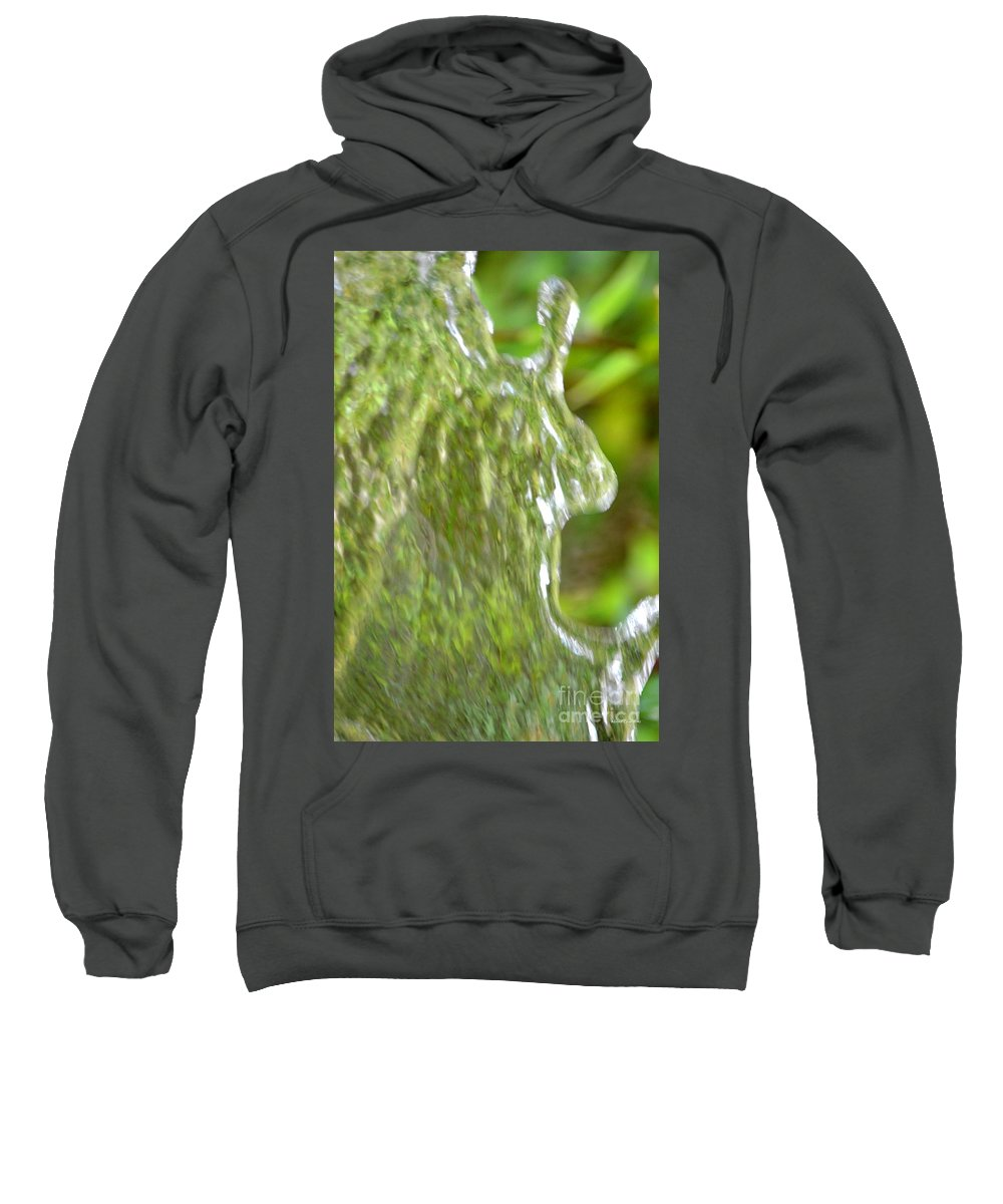 Natural Sweatshirt featuring the photograph Natural Abstract 34 by Maria Urso