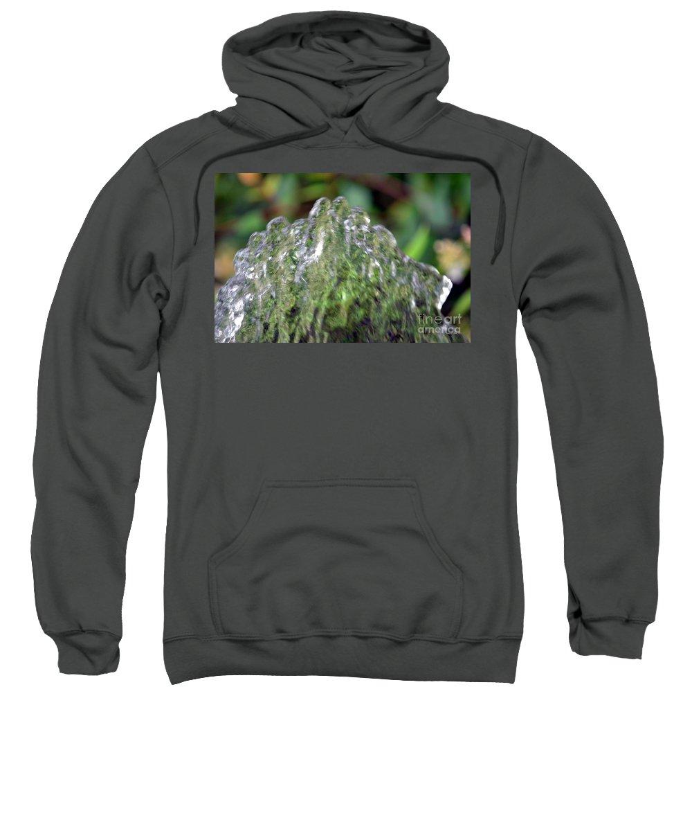 Natural Sweatshirt featuring the photograph Natural Abstract 35 by Maria Urso