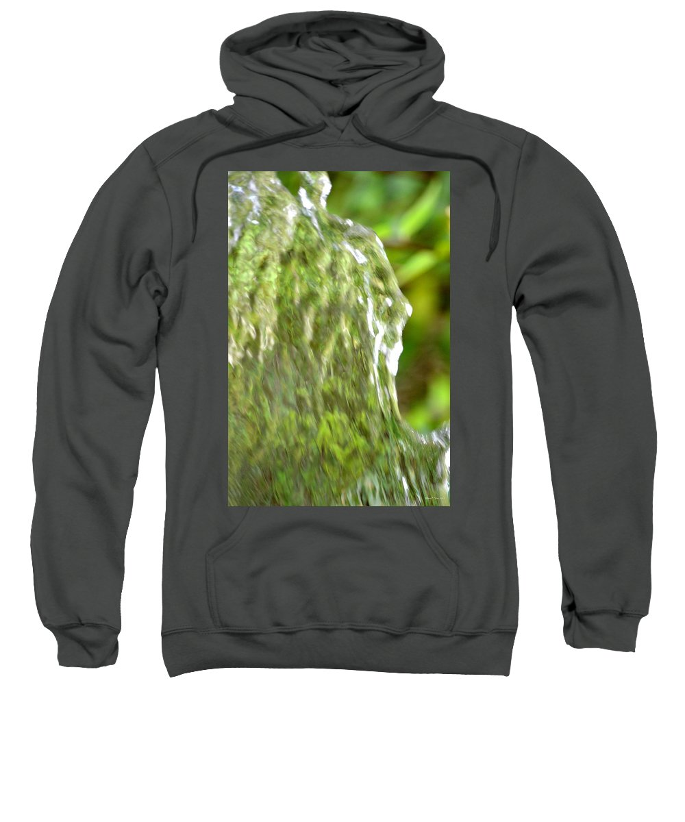 Natural Sweatshirt featuring the photograph Natural Abstract 36 by Maria Urso