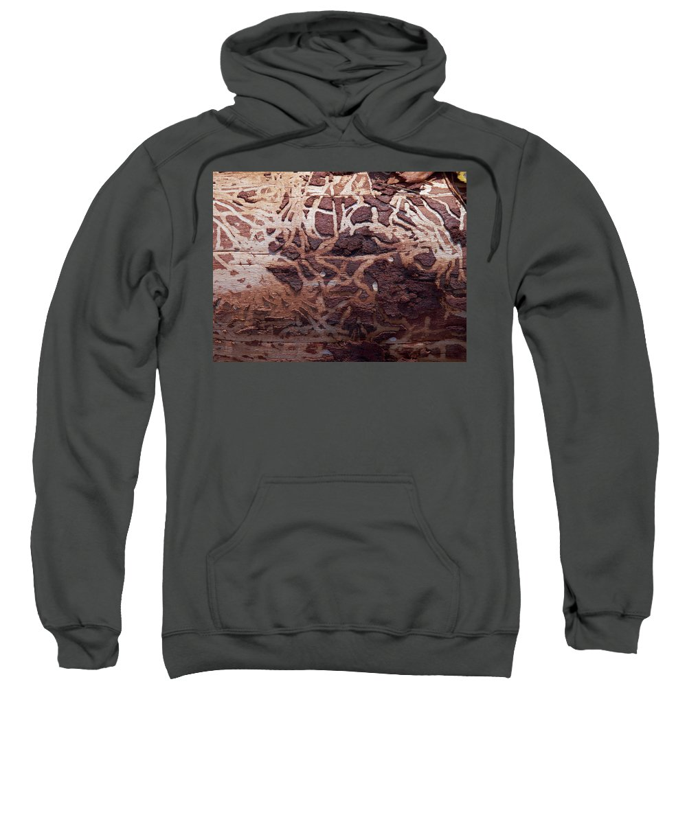 Autumn Sweatshirt featuring the photograph Natural Carvings by Jouko Lehto