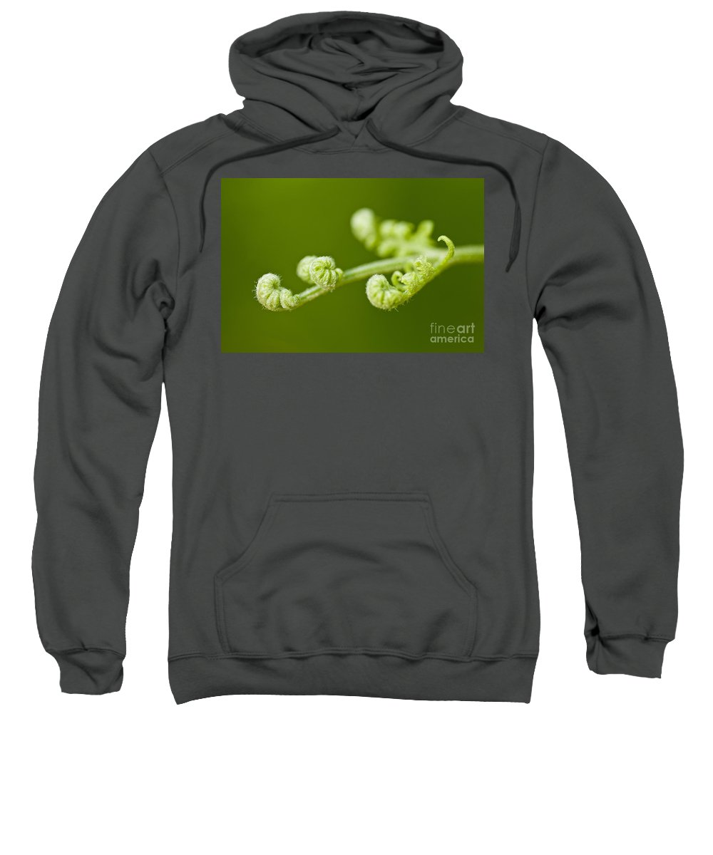 Abstract Sweatshirt featuring the photograph Nature's Abstract 5 by Michael Cummings