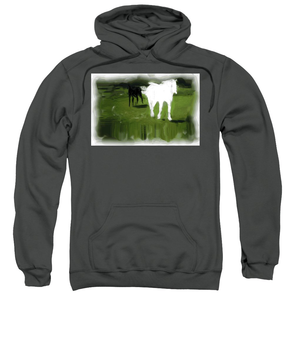 Horse Sweatshirt featuring the photograph Nearly Broke An Ankle by Trish Tritz