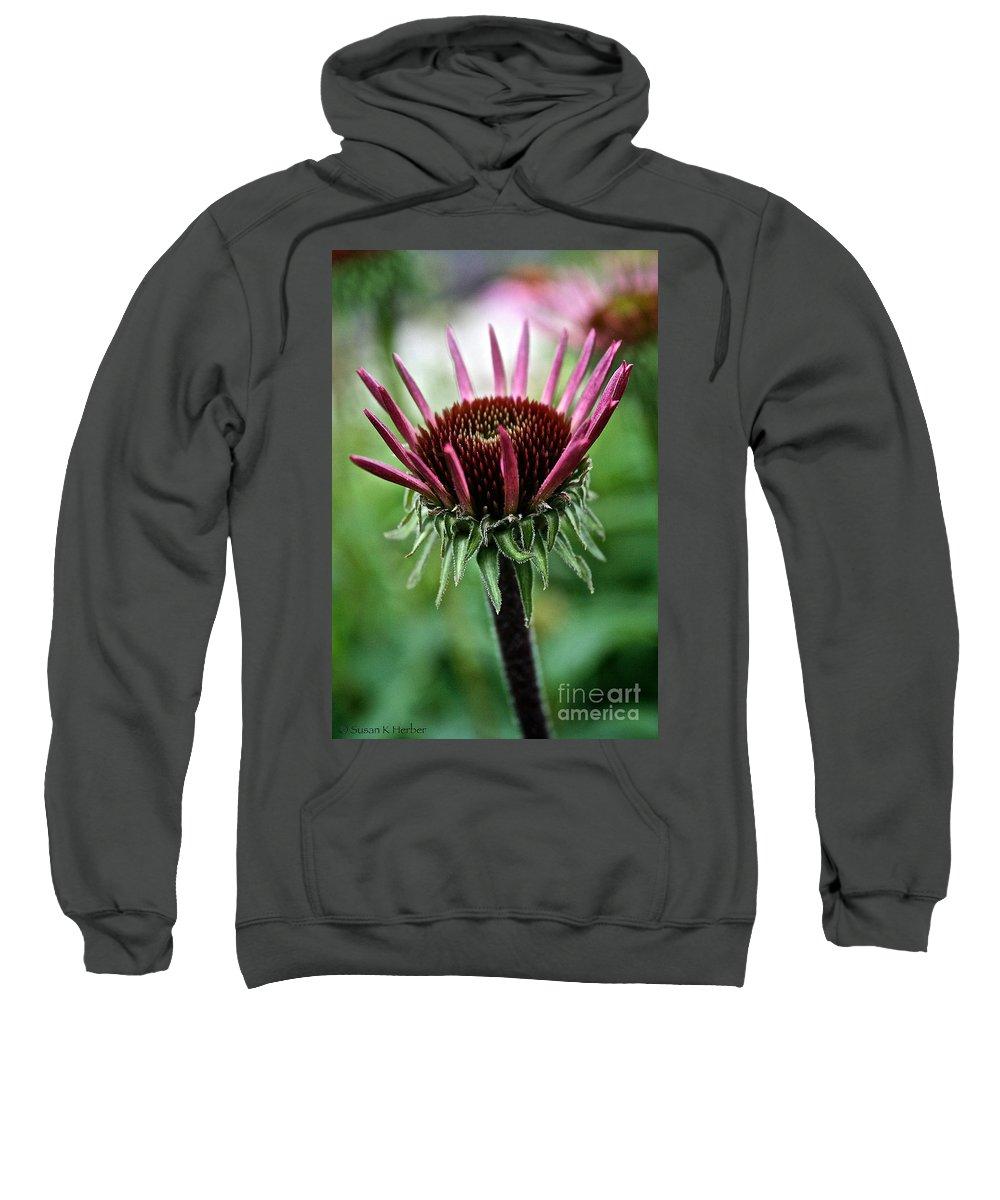 Minnesota Sweatshirt featuring the photograph New Beginnings by Susan Herber