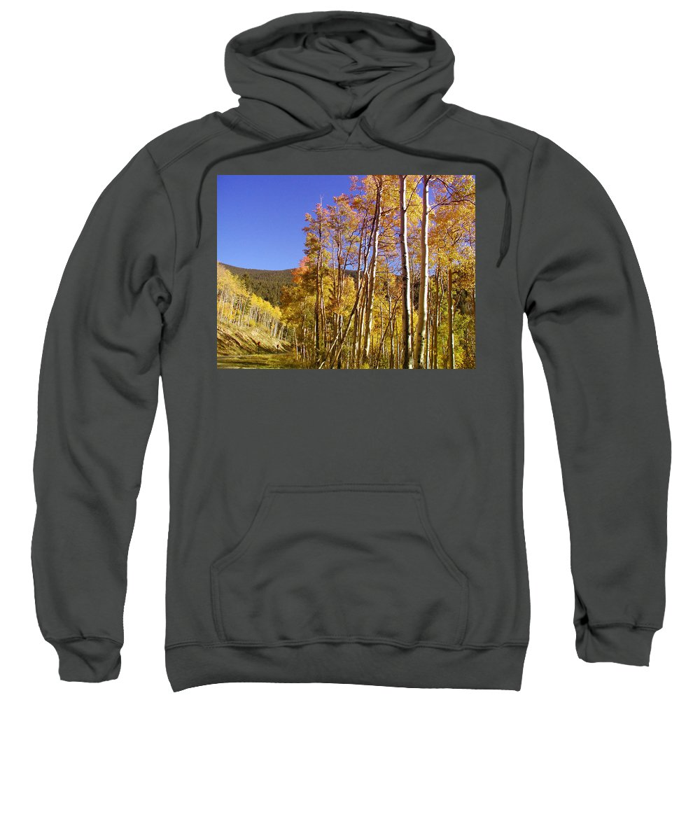 Landscape Sweatshirt featuring the photograph New Mexico Series - Autumn On The Mountain by Kathleen Grace