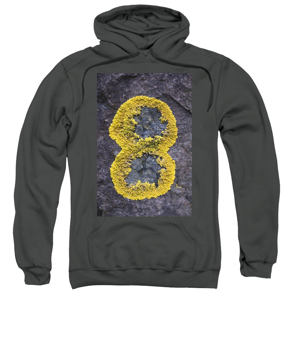 Rock Sweatshirt featuring the photograph Number 8 by Glenn Gordon