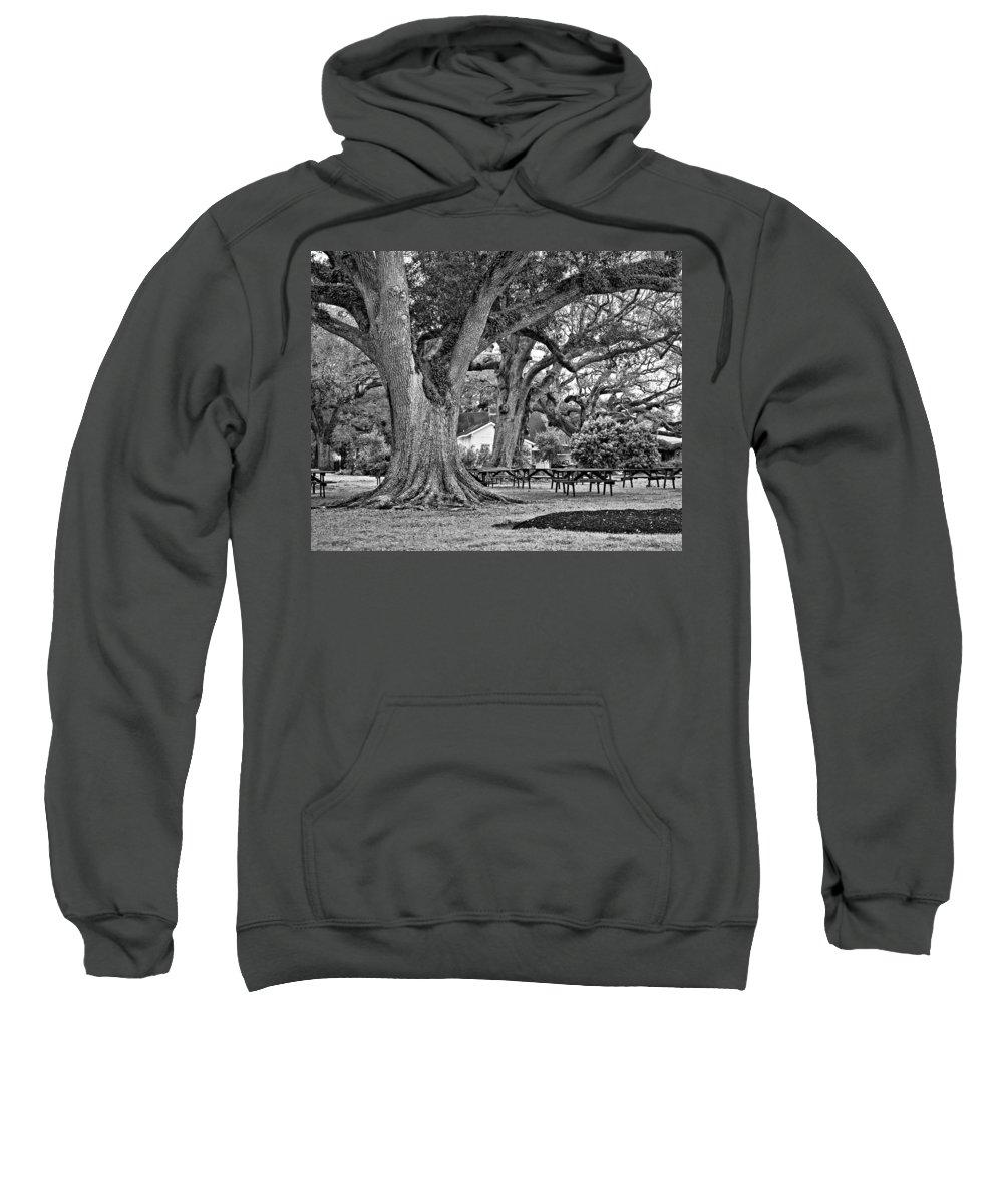 Oak Alley Plantation Sweatshirt featuring the photograph Oak Alley Backyard Monochrome by Steve Harrington