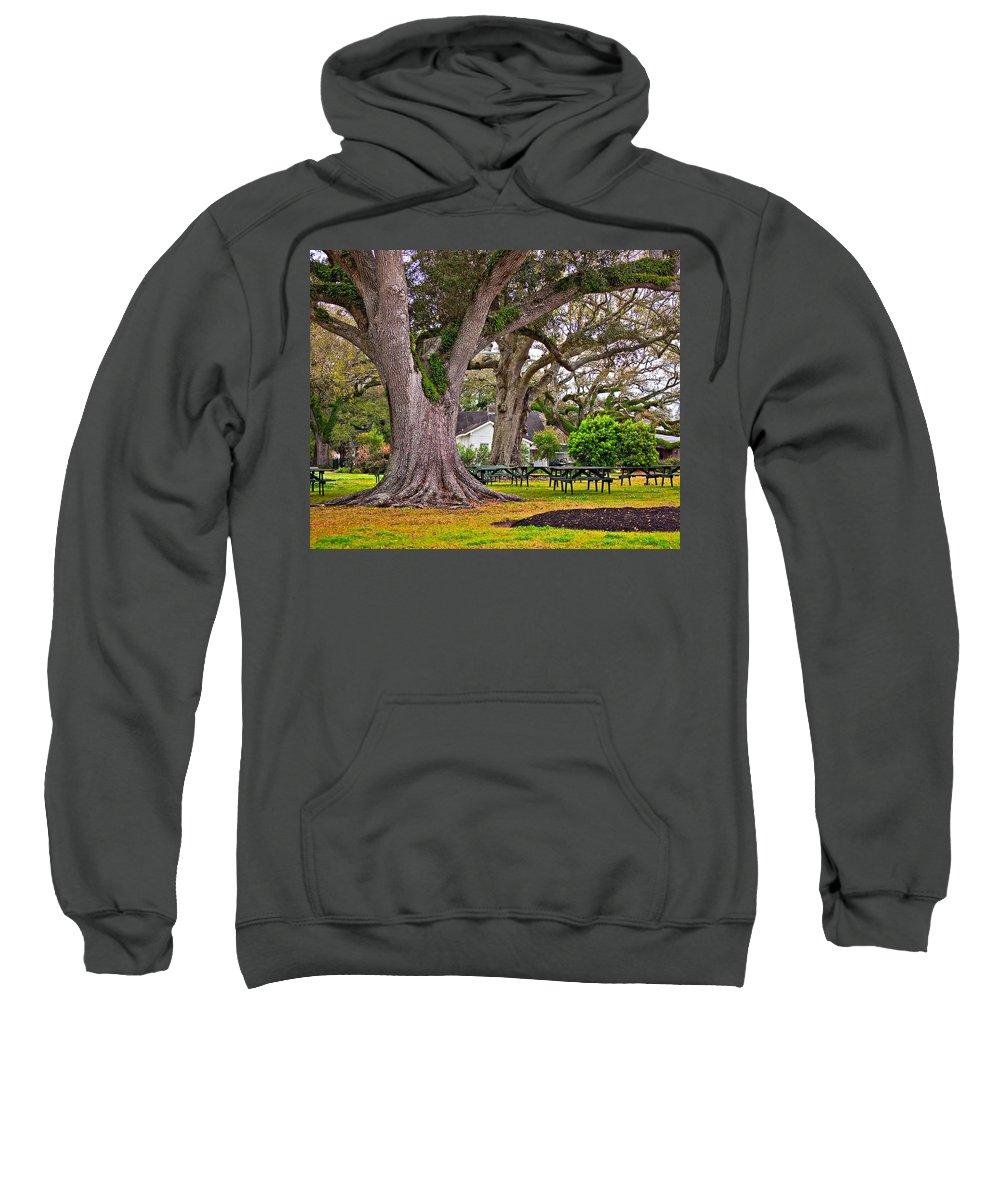 Oak Alley Plantation Sweatshirt featuring the photograph Oak Alley Backyard by Steve Harrington