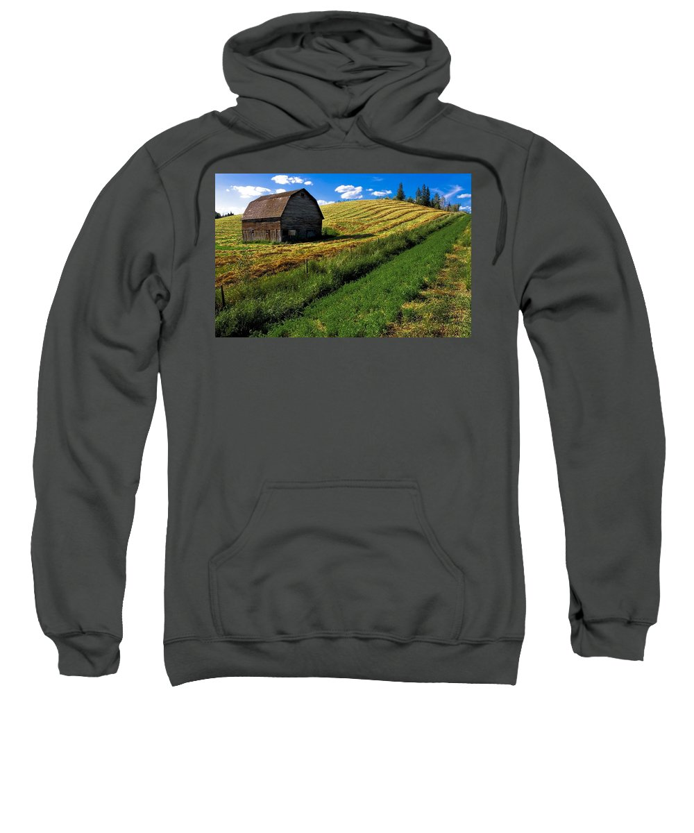 Agriculture Sweatshirt featuring the photograph Old Barn In A Field by Steve Nagy