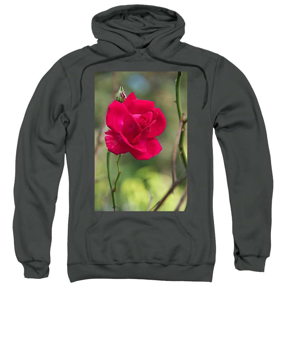 Flower Sweatshirt featuring the photograph One Rose by Joseph Yarbrough