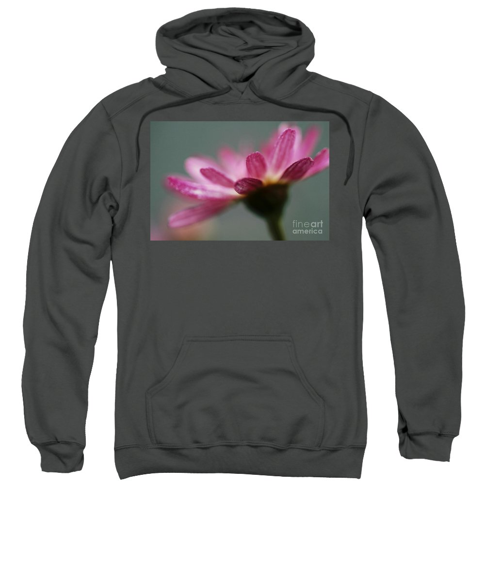 Pink Sweatshirt featuring the photograph Open Hands by Stephen Mitchell