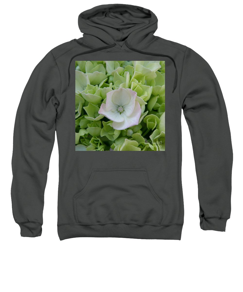 Hydrangea Sweatshirt featuring the photograph Opening To The Possibilities by Lainie Wrightson