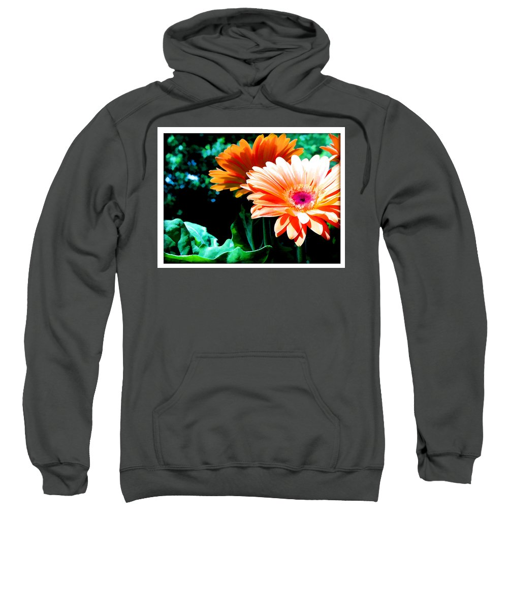 Flower Flowers Daisy Gerber Gerber+daisy Gerber+daisies Daisies Leaf Leaves Garden Flora Floral Nature Natural Bloom Blooms Blossoms Blossom Bouquet Arrangement Colorful Plant Plants Botanical Botanic Blooming Gardens Gardening Tropical Sweatshirt featuring the painting Orange Gerber Daisies by Elaine Plesser