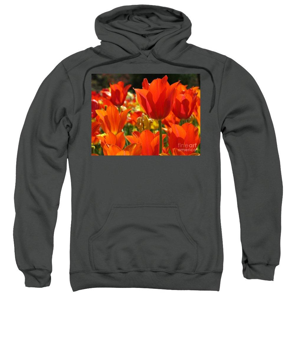 Flower Sweatshirt featuring the photograph Orange Glow by Ashley M Conger