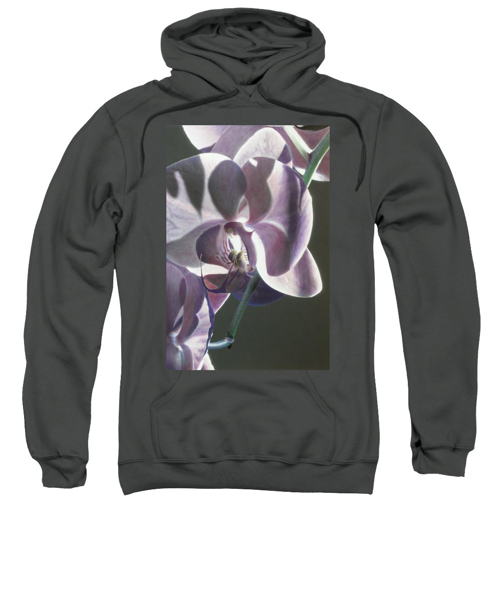 Florals Sweatshirt featuring the photograph Orchid by Linda Dunn