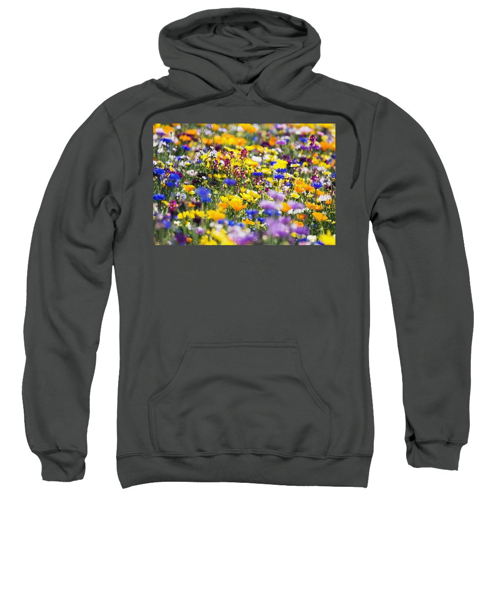 Wildflower Sweatshirt featuring the photograph Oregon Wildflowers by Craig Tuttle