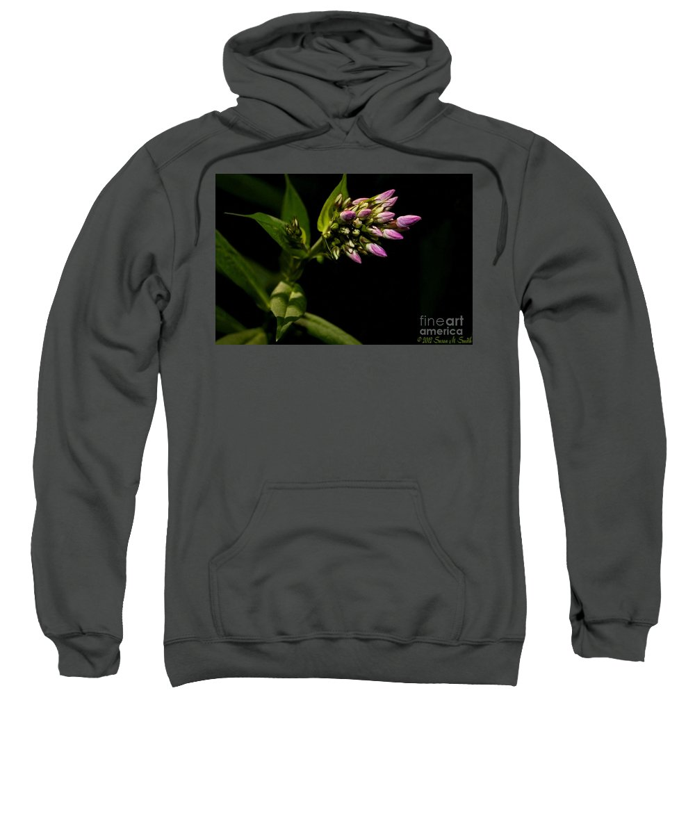 Flower Sweatshirt featuring the photograph Out Of The Shadows by Susan Smith