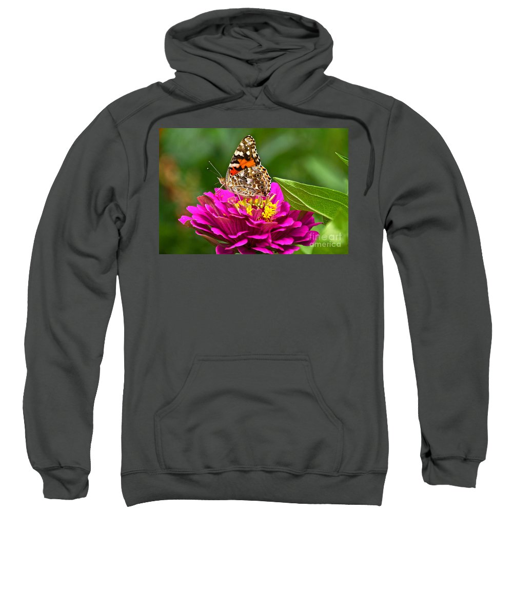 American Painted Lady Sweatshirt featuring the photograph Painted Lady With Zinnia by Byron Varvarigos