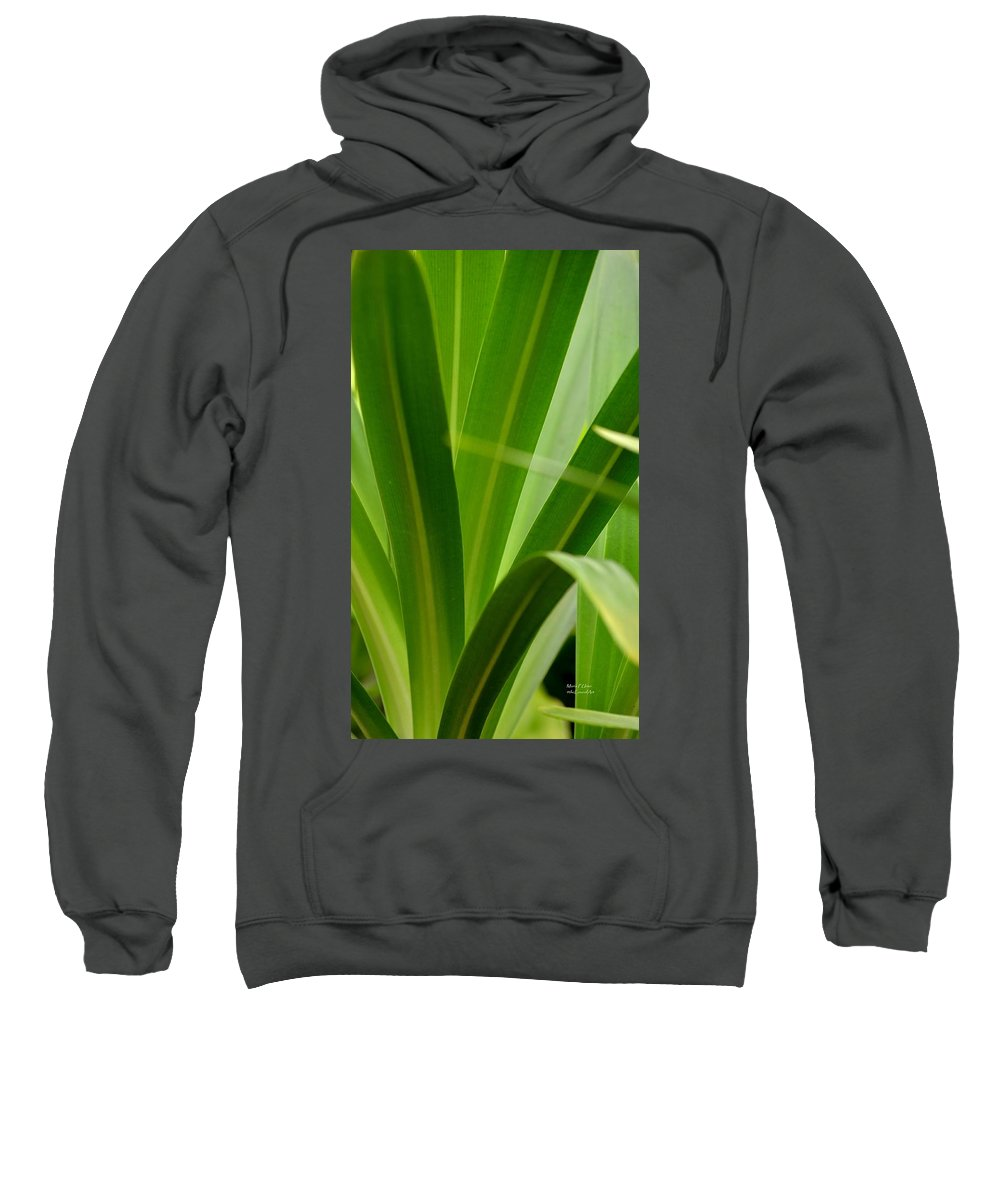 Particularly Sweatshirt featuring the photograph Particularly Green by Maria Urso
