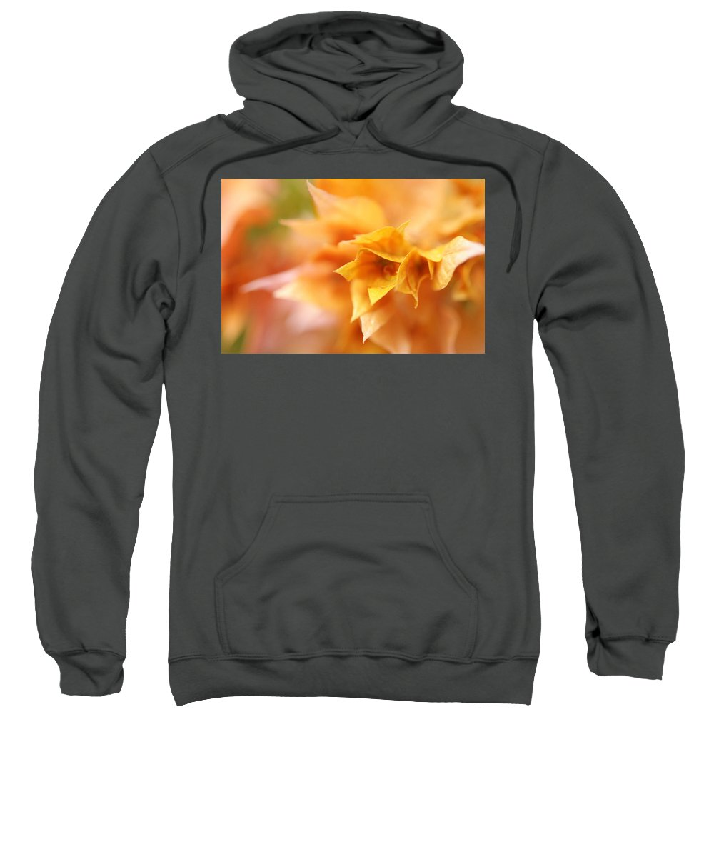 Bougainvillea Sweatshirt featuring the photograph Passion For Flowers. Orange Delight by Jenny Rainbow