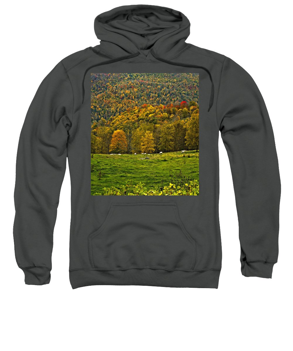 West Virginia Sweatshirt featuring the photograph Pastoral Painted by Steve Harrington