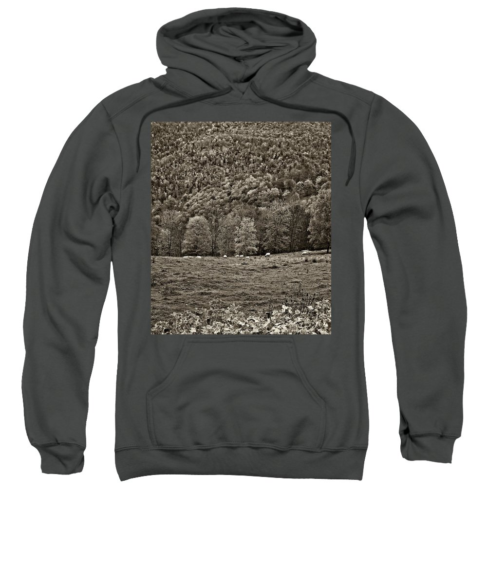 West Virginia Sweatshirt featuring the photograph Pastoral Sepia by Steve Harrington