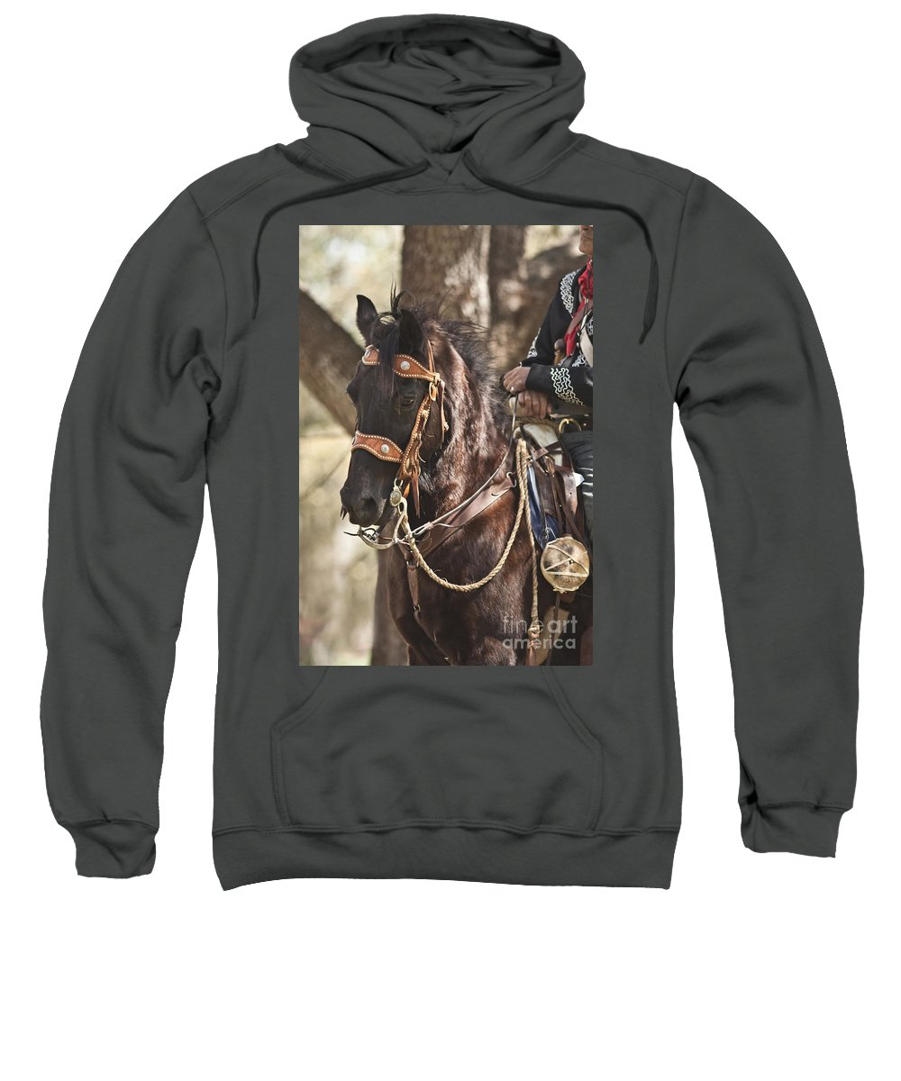 Washington On The Brazos Sweatshirt featuring the photograph Patiently Waiting by Kim Henderson