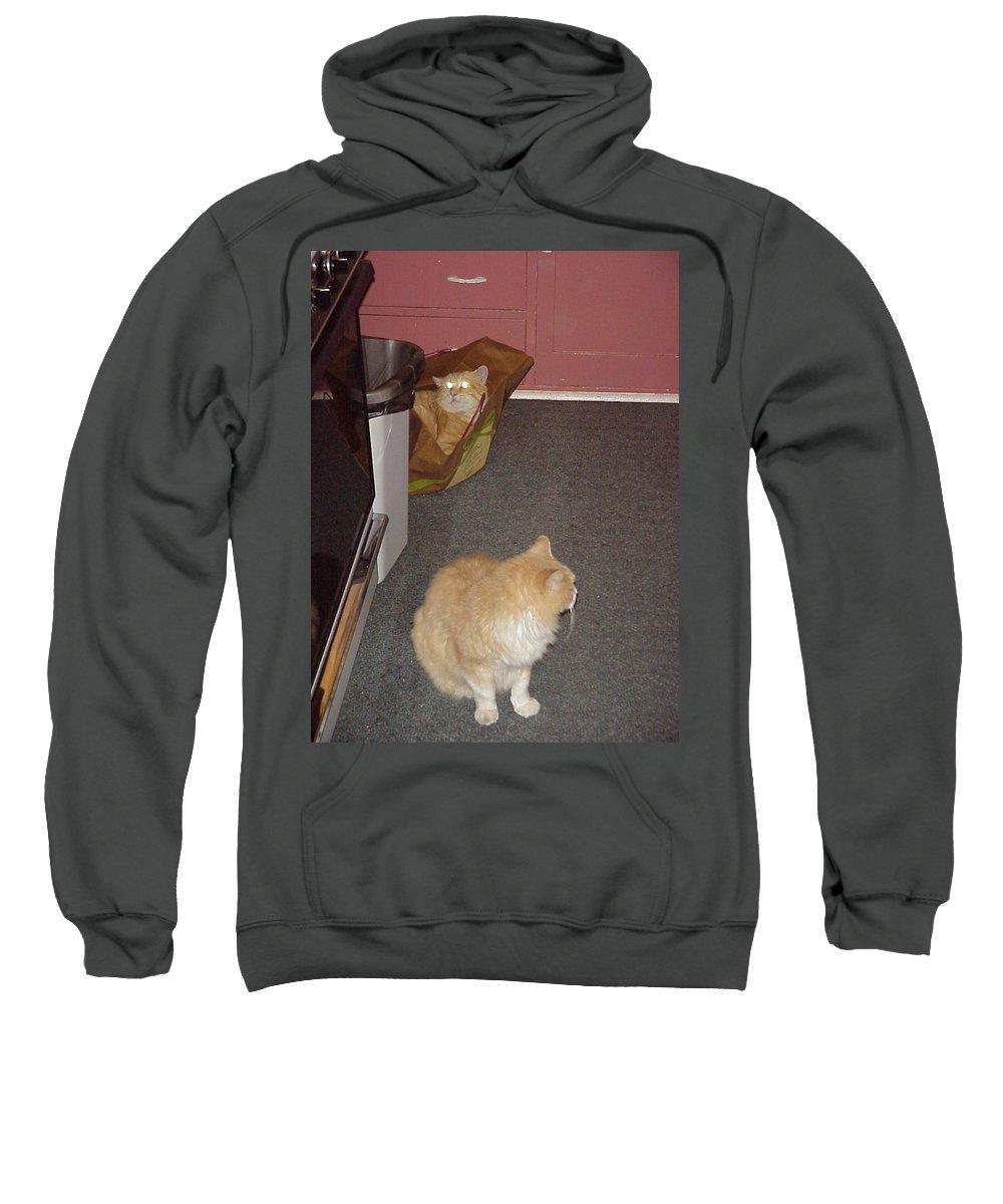 Minions Sweatshirt featuring the photograph Patty Vs Vengeful Sack God by John Bowers