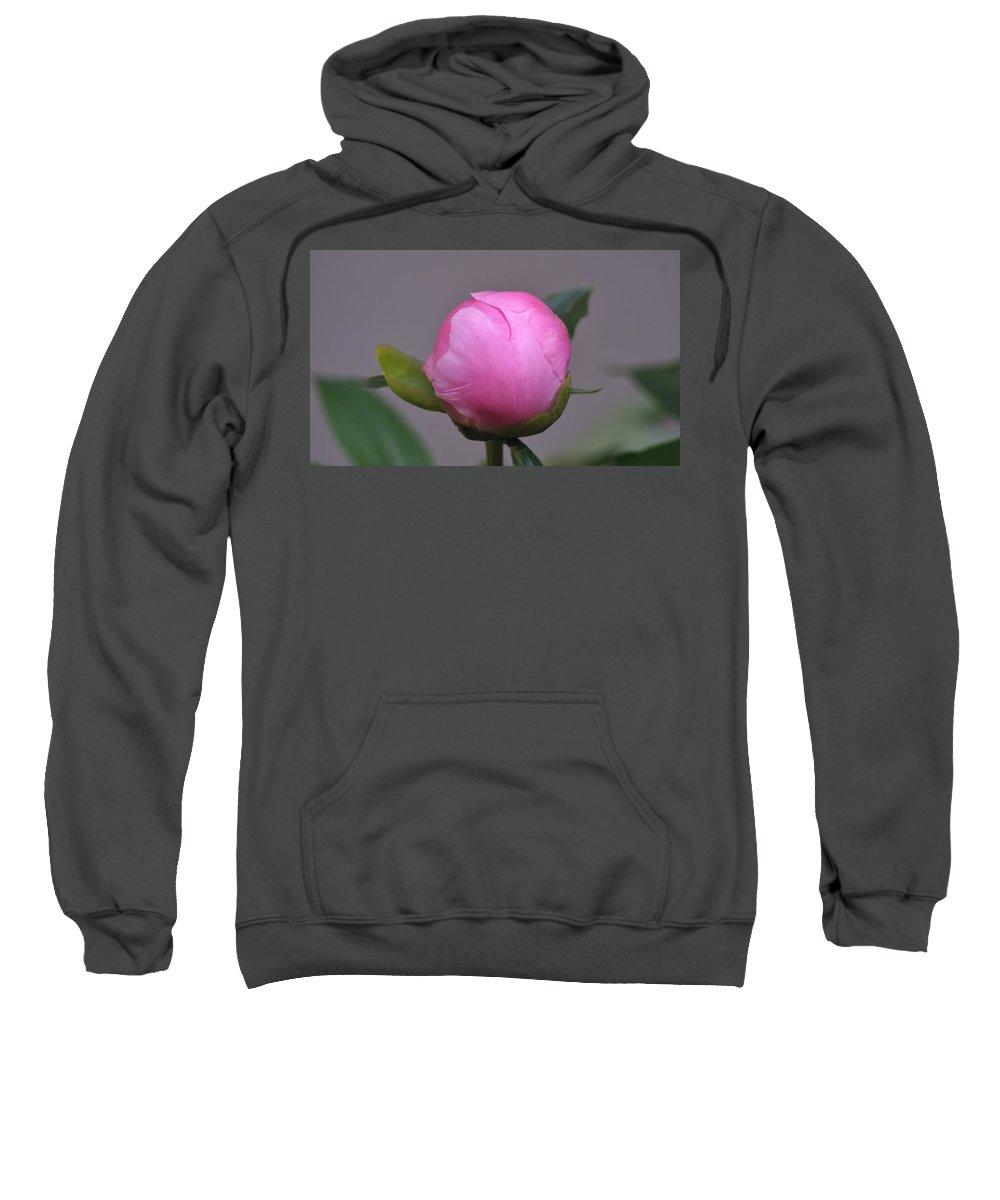 Sweatshirt featuring the photograph Peony Bud by Barbara S Nickerson