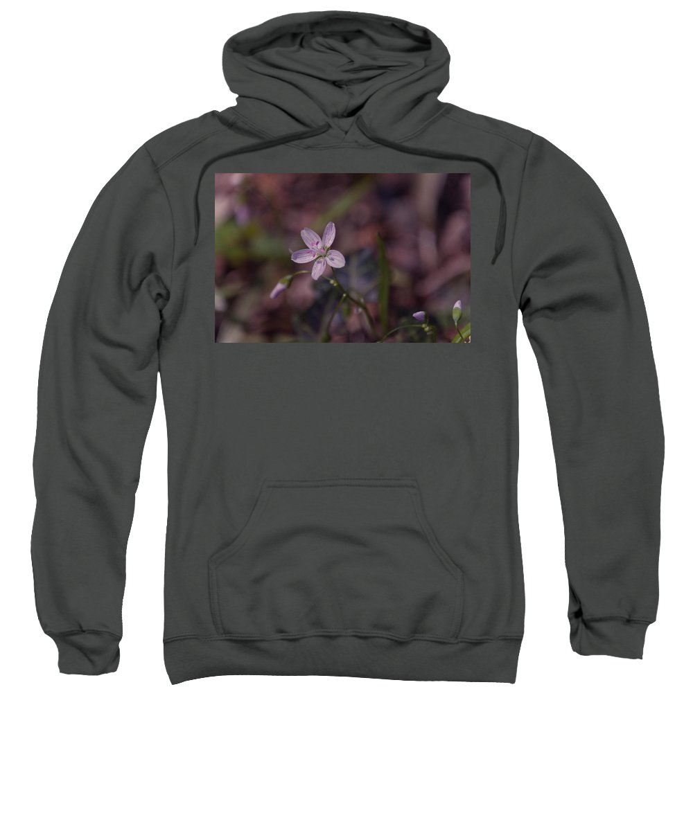 Flower Sweatshirt featuring the photograph Peyton's Petals by Trish Tritz