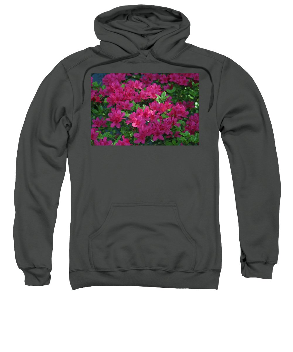 Sweatshirt featuring the photograph Pink Along The Fence by Barbara S Nickerson
