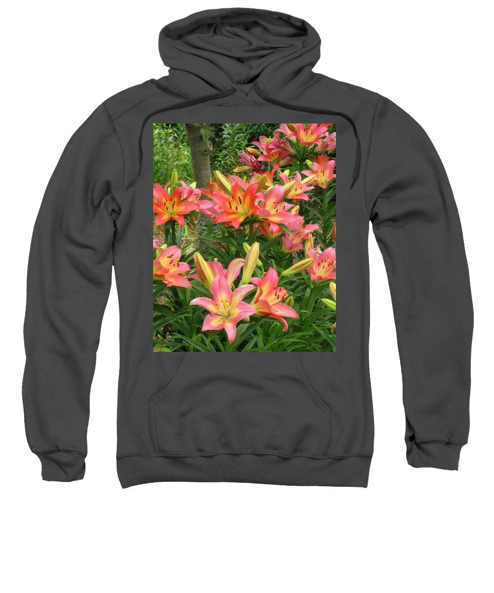 Pink Daylilies Sweatshirt featuring the photograph Pink And Yellow Daylilies by Greg Matchick