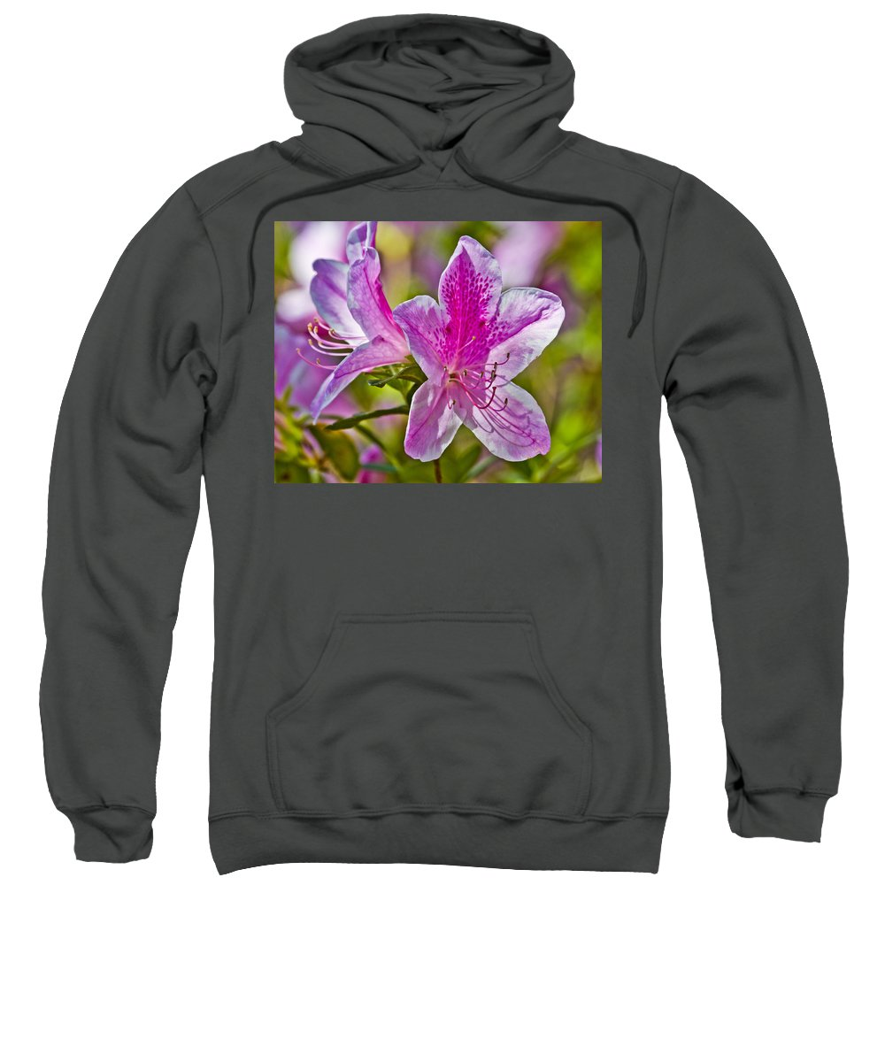 Flower Sweatshirt featuring the photograph Pink by Betsy Knapp
