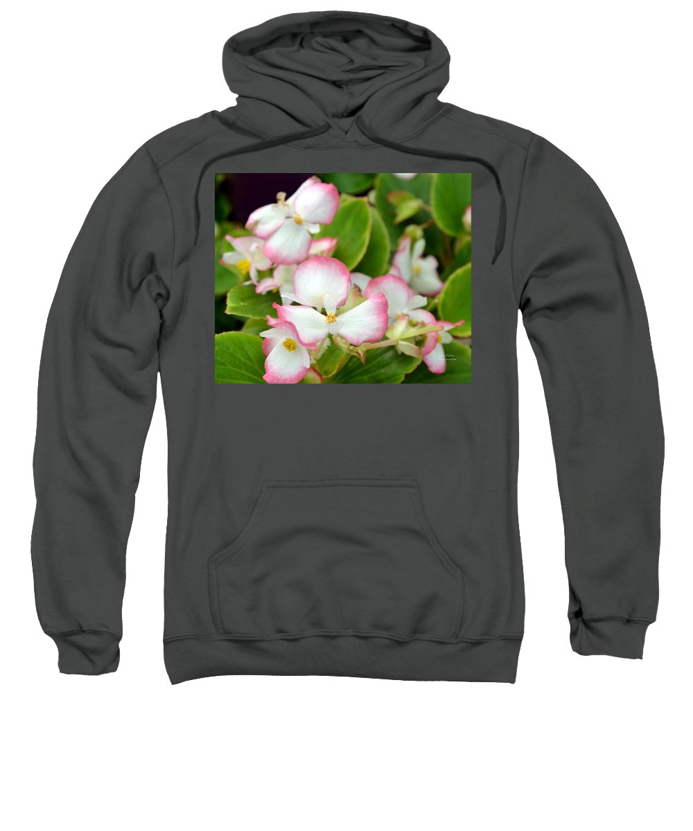 Pink Sweatshirt featuring the photograph Pink Dipped by Maria Urso