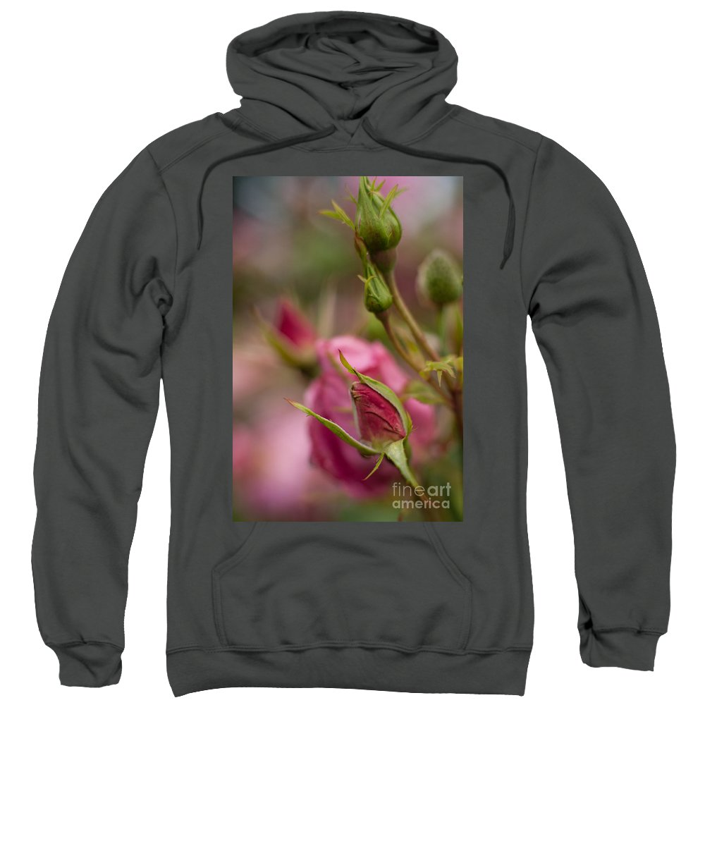 Flower Sweatshirt featuring the photograph Pink Roses by Mike Reid