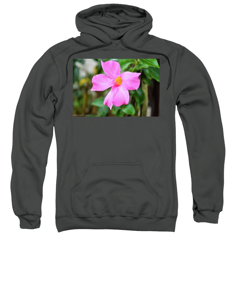 Flowers Sweatshirt featuring the photograph Pink by Shannon Harrington