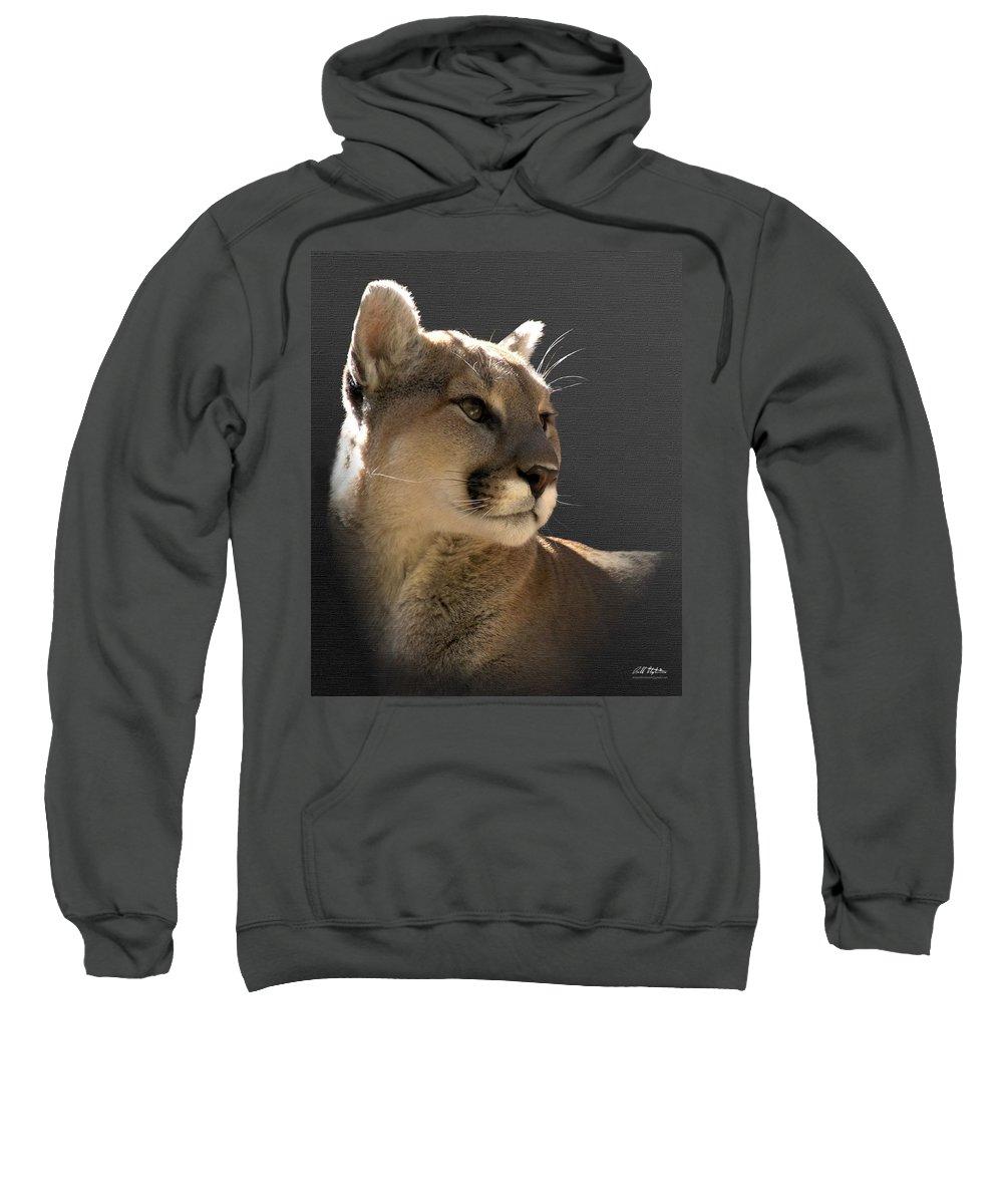 Mountain Lion Sweatshirt featuring the digital art Portrait Of A Cat by Bill Stephens