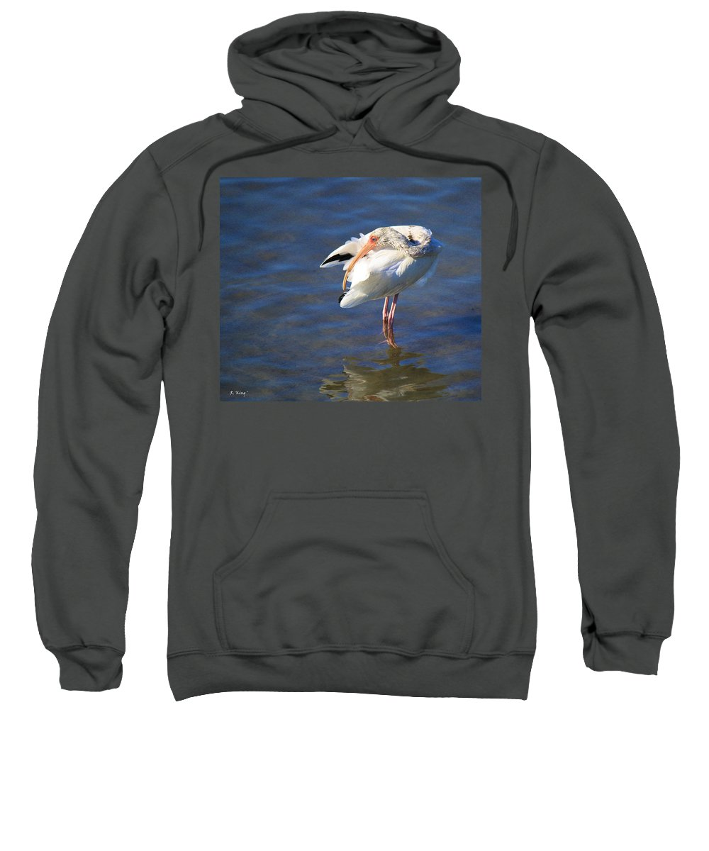 Roena King Sweatshirt featuring the photograph Preening The Evening Ritual by Roena King