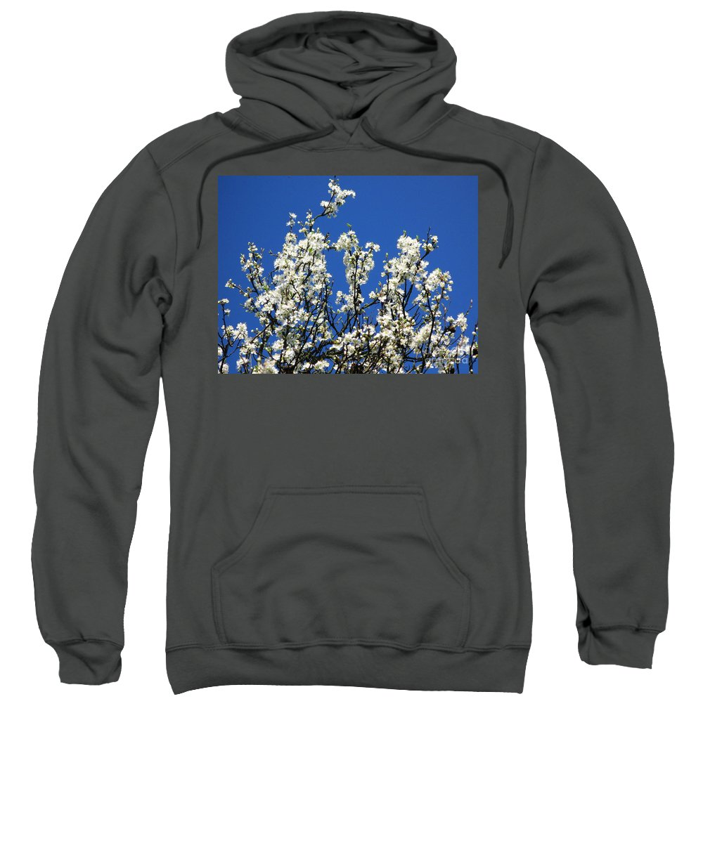 Spring Blossom Sweatshirt featuring the photograph Profusion by John Chatterley
