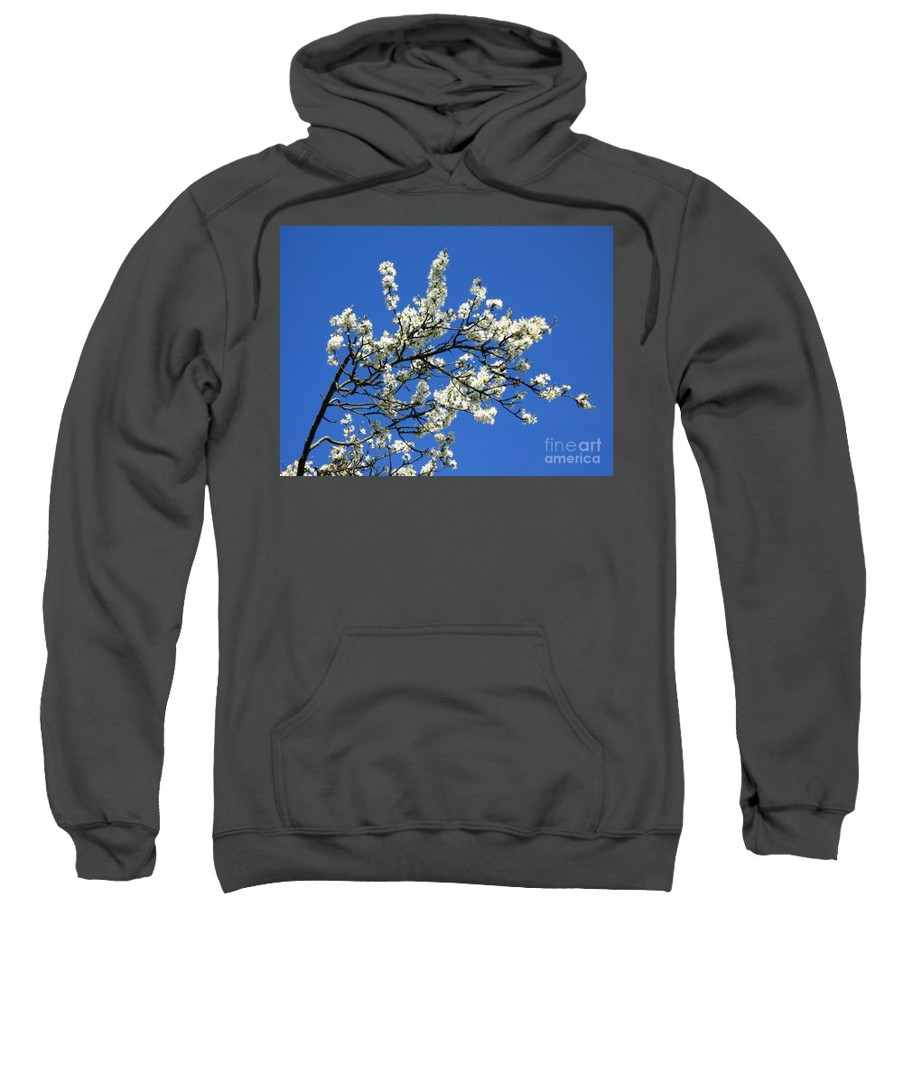 Spring Blossom Sweatshirt featuring the photograph Promise Of Summer by John Chatterley