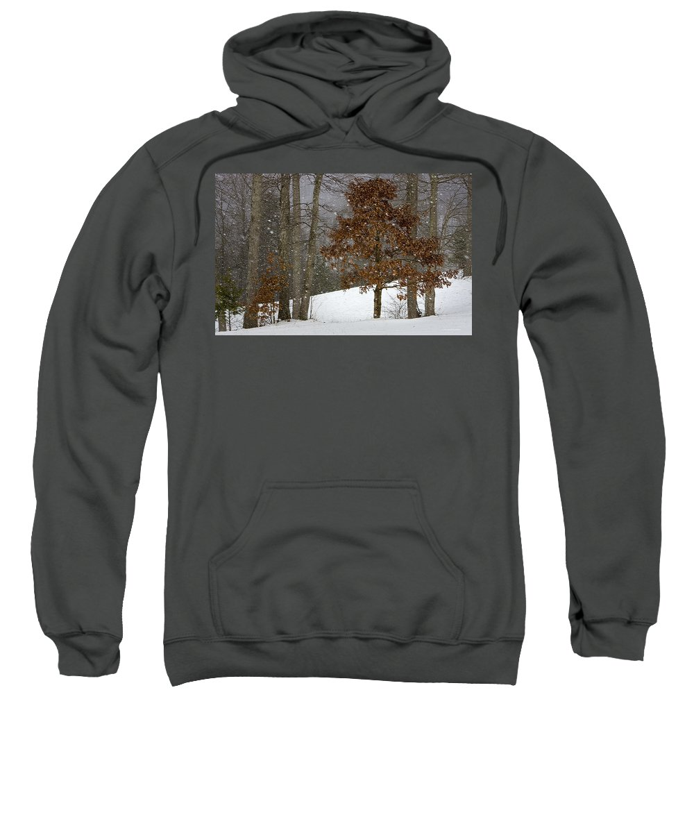 Landscape Sweatshirt featuring the photograph Promises To Keep by Ron Jones