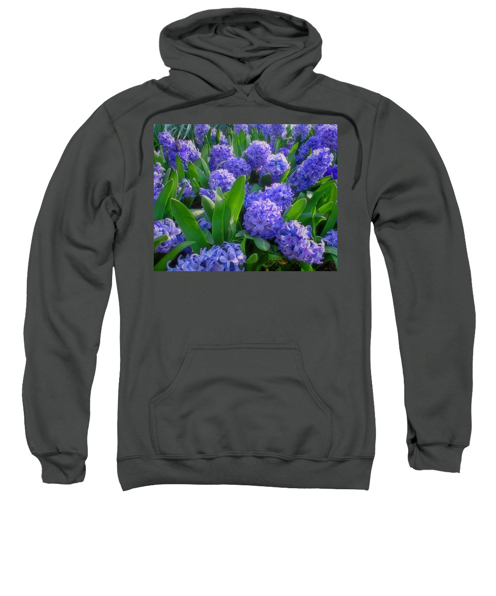 Purple Hyacinths Sweatshirt featuring the photograph Purple Hyacinths by Greg Matchick