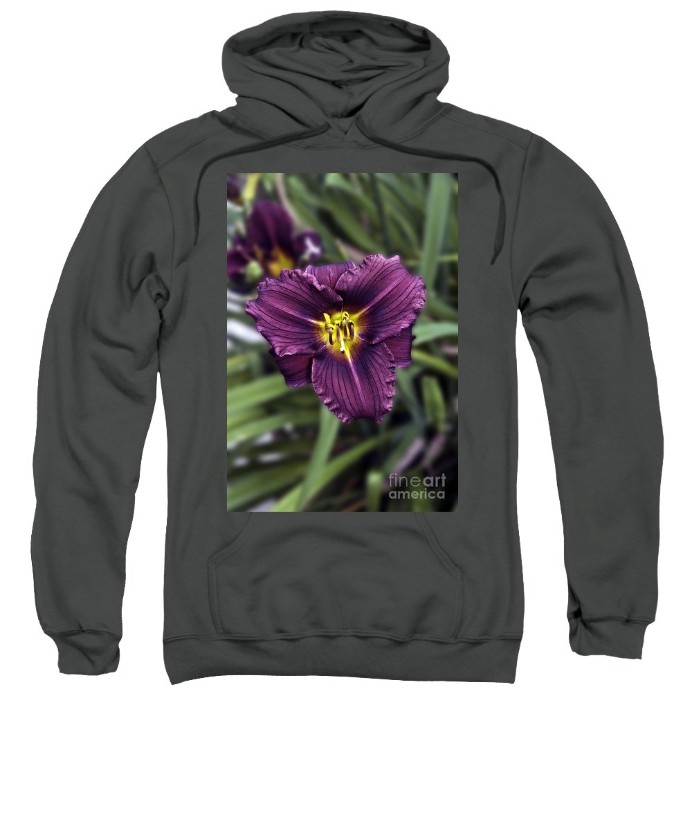 Nature Sweatshirt featuring the photograph Purple Lilly by Jim Chamberlain
