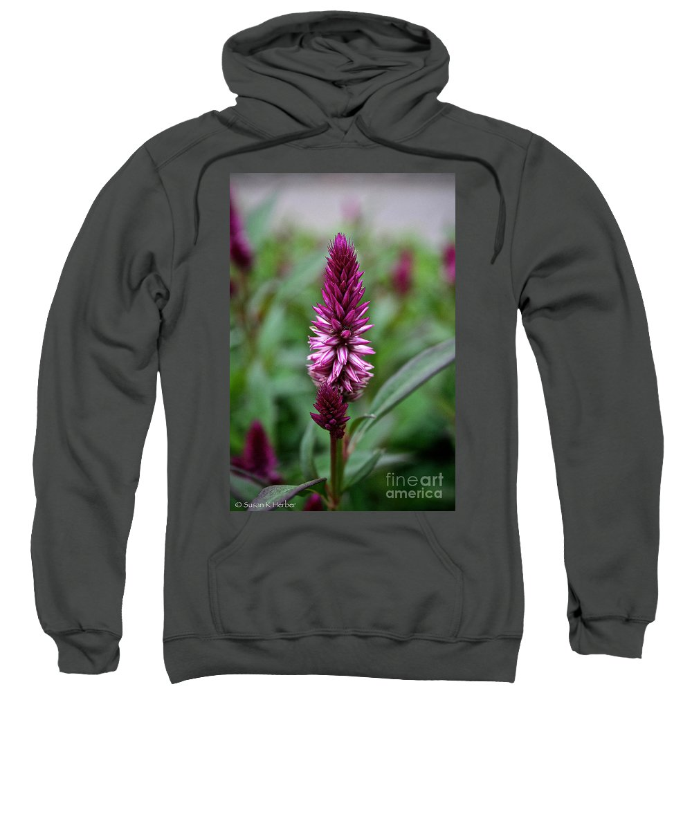 Floral Sweatshirt featuring the photograph Purple Parfait by Susan Herber