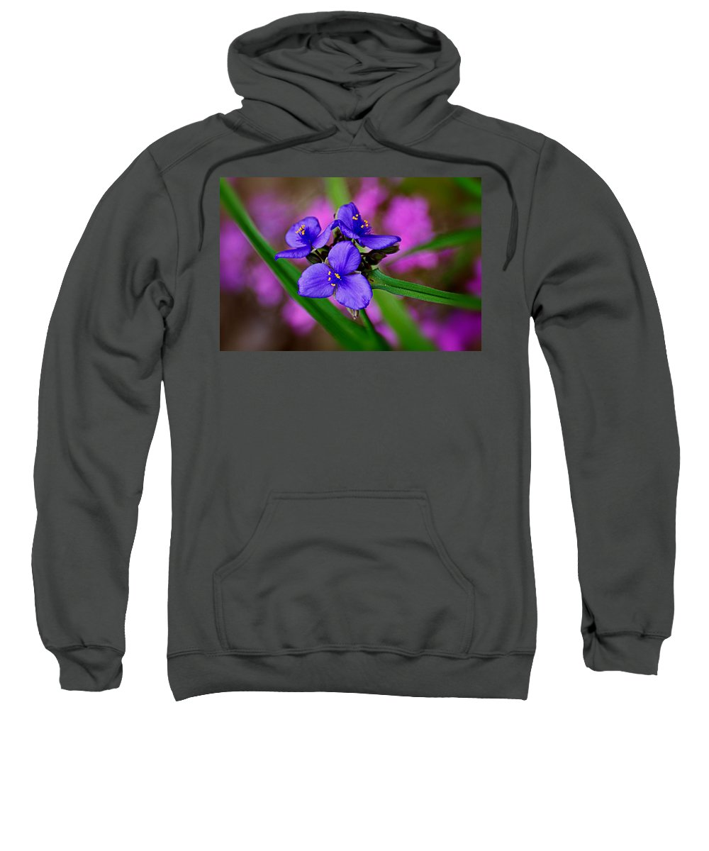 Purple Sweatshirt featuring the photograph Purple Passion by Marty Koch