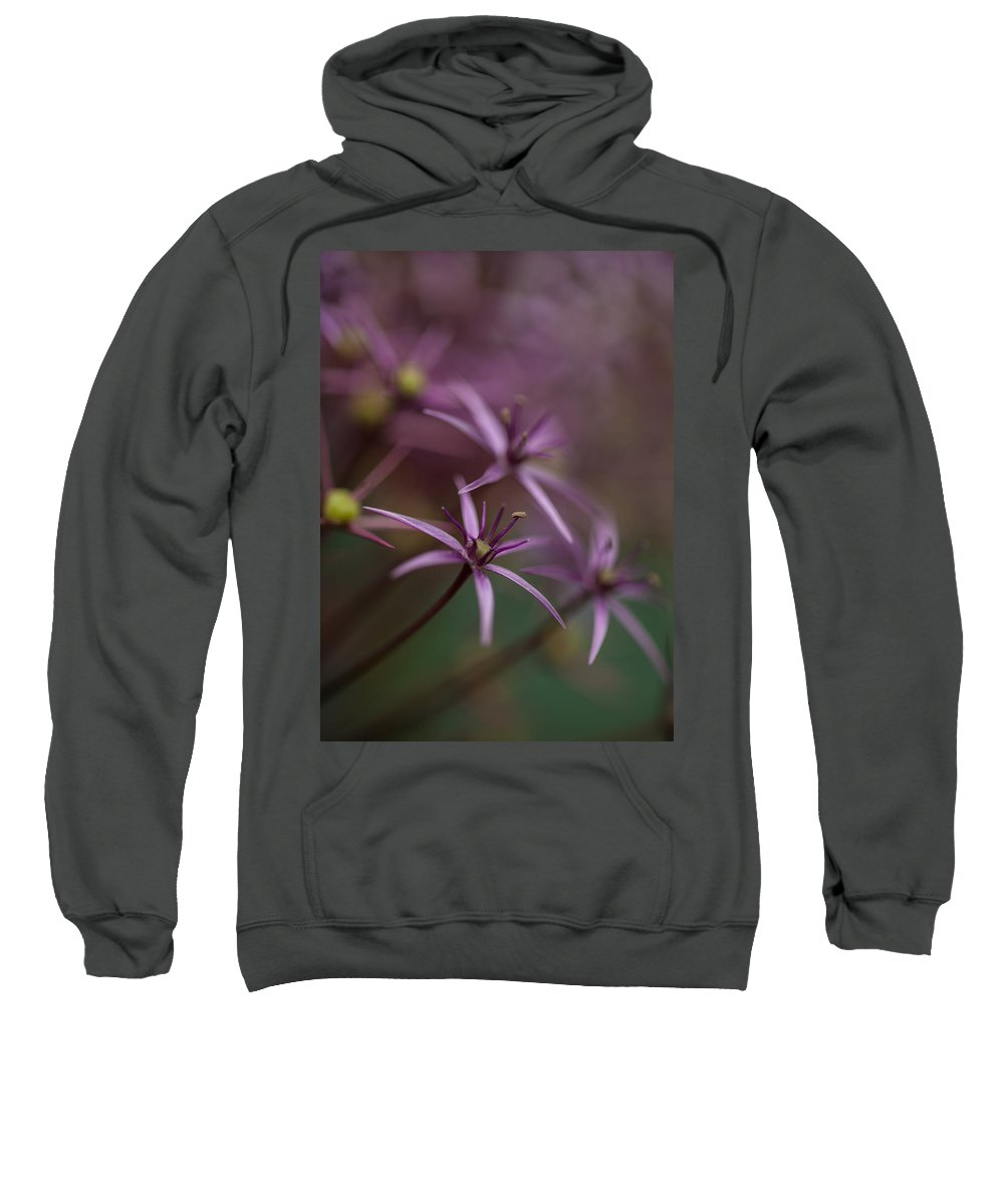 Flower Sweatshirt featuring the photograph Purple Stars by Mike Reid