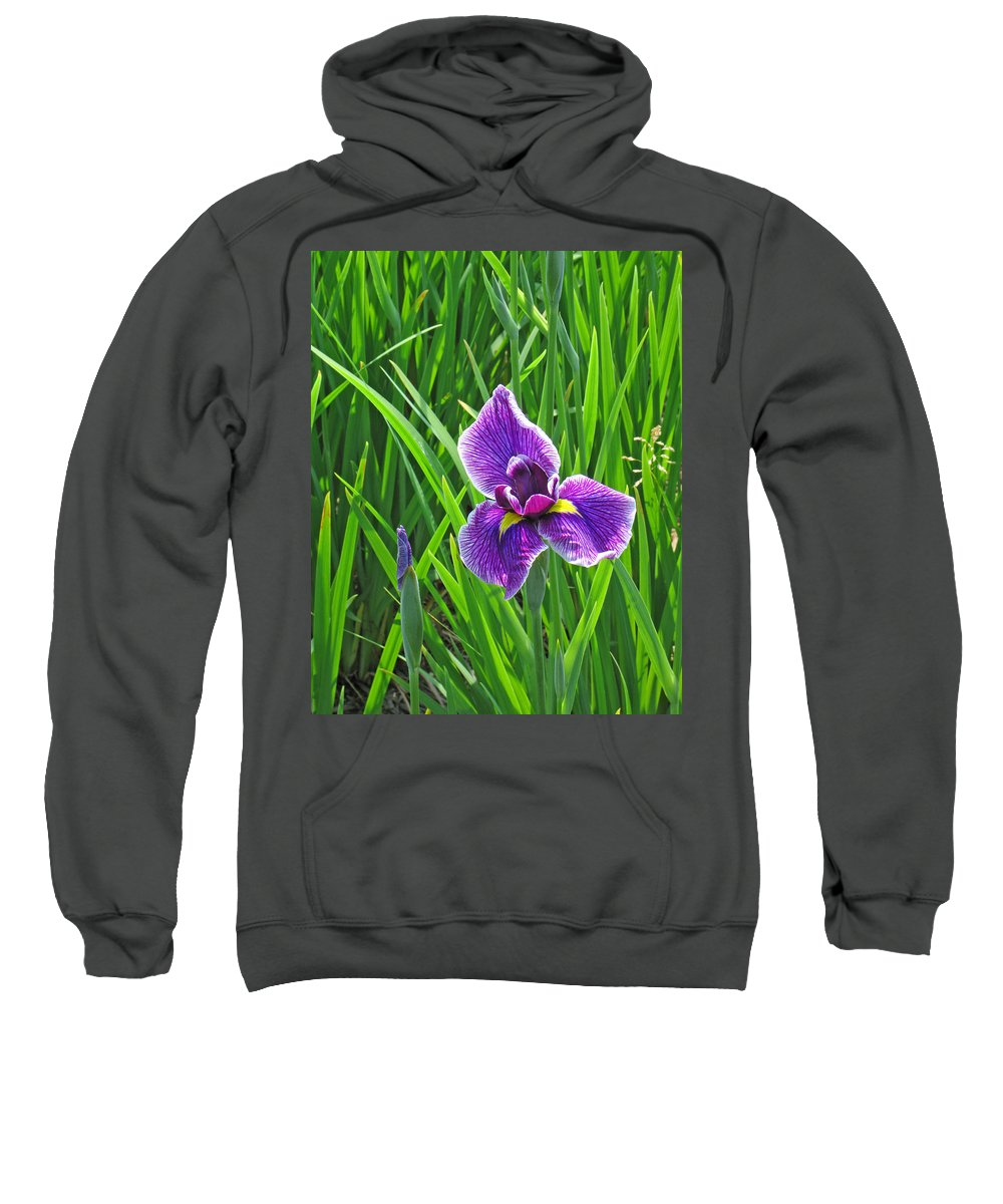 Purple Water Iris Sweatshirt featuring the photograph Purple Water Iris by Greg Matchick
