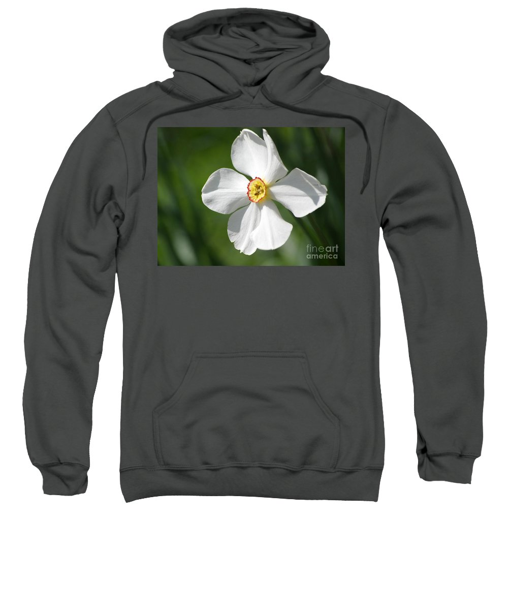 Flowers Sweatshirt featuring the photograph Put On A Happy Face by Living Color Photography Lorraine Lynch