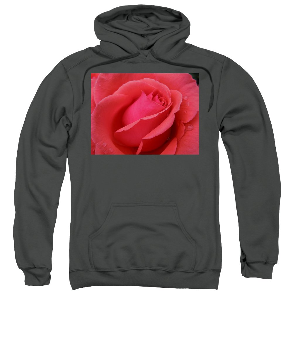 Flowers Sweatshirt featuring the photograph Raindrops On Roses Six by Diana Hatcher