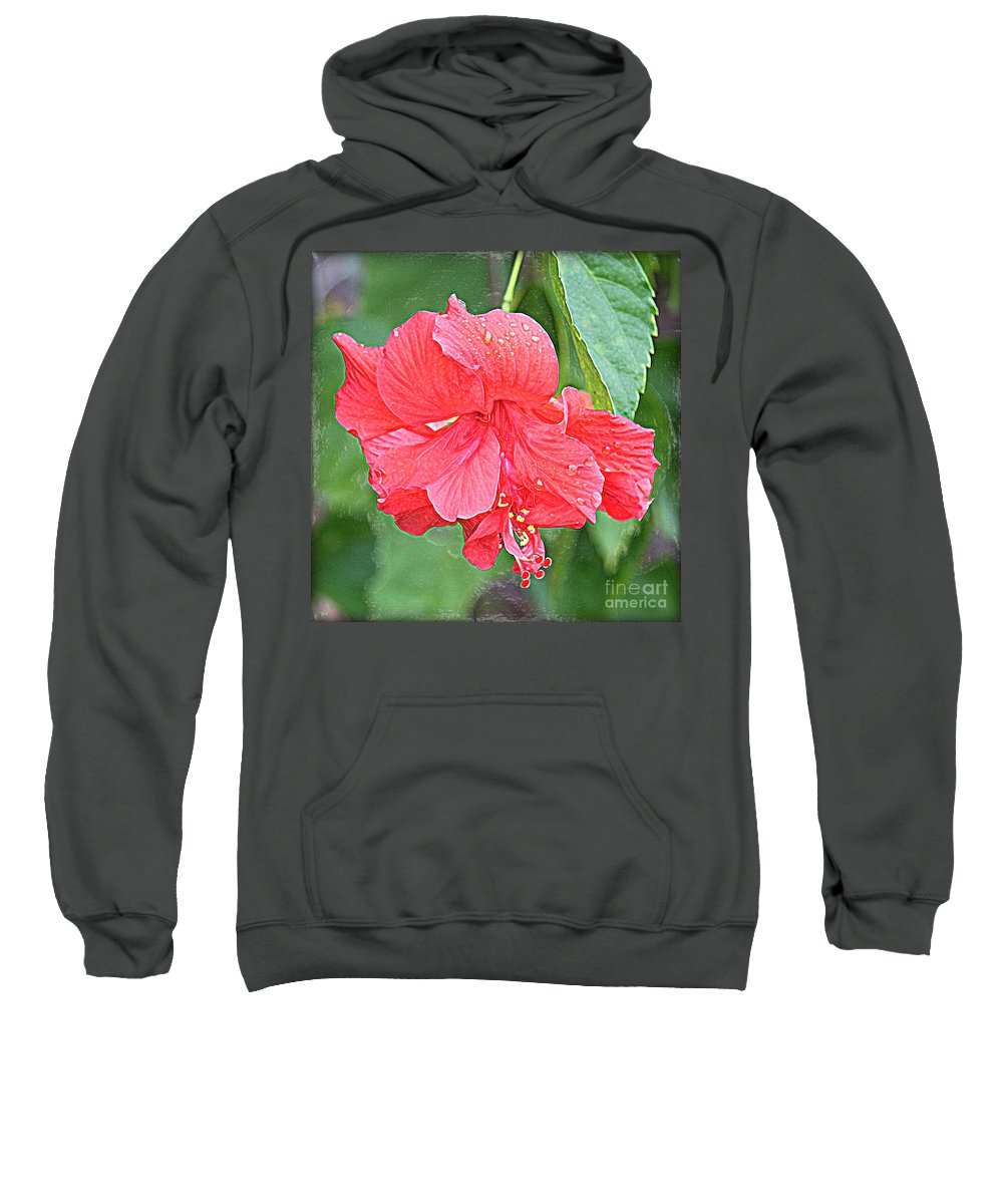 Hibiscus Sweatshirt featuring the photograph Rainy Day Hibiscus by Carol Groenen